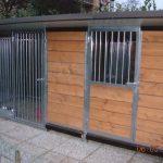 Box per cani gallery